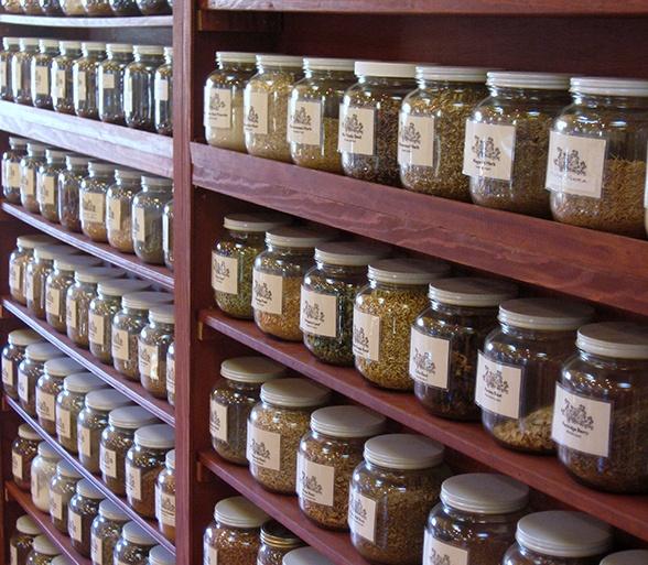 The Northwest School For Botanical Studies